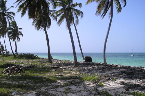#3 Beautiful ocean front land near Bayahibe