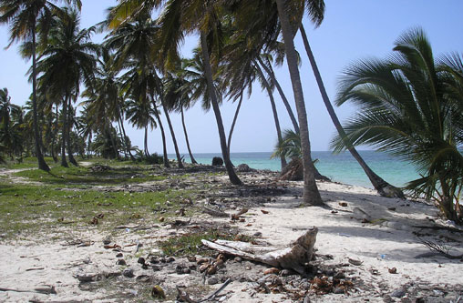 #0 Beautiful ocean front land near Bayahibe
