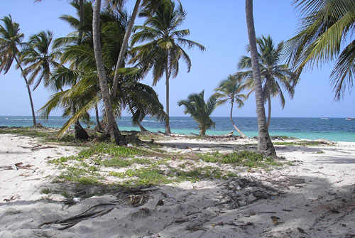 #4 Beautiful ocean front land near Bayahibe