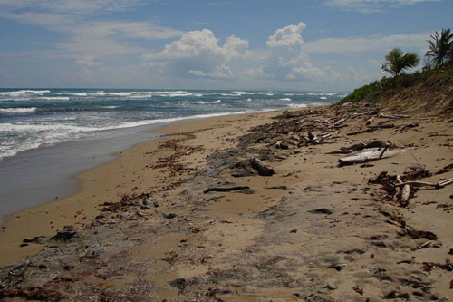 #12 Prime beachfront land for sale in Cabarete