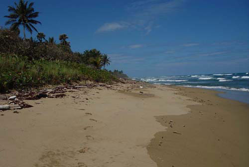 #3 Prime beachfront land for sale in Cabarete