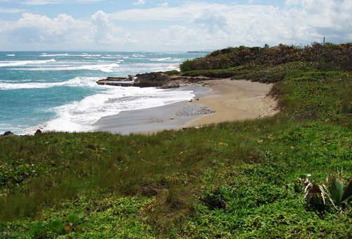 #4 Prime beachfront land for sale in Cabarete