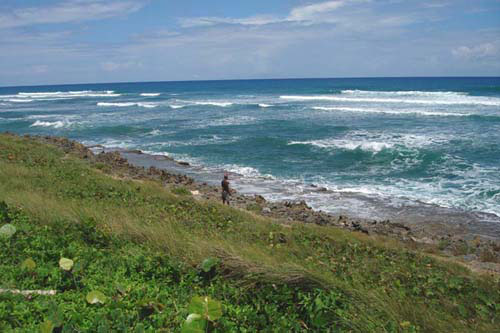 #5 Prime beachfront land for sale in Cabarete