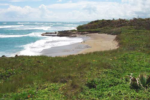 #6 Prime beachfront land for sale in Cabarete