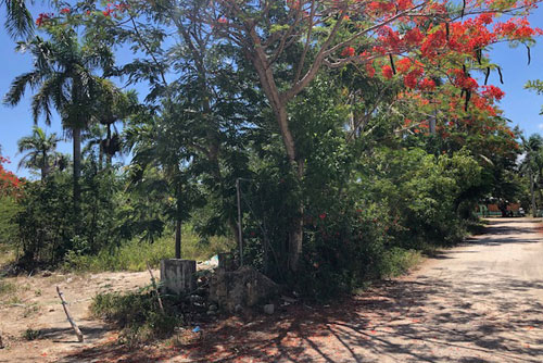 #9 Commercial lot on main highway, close to downtown Sosua
