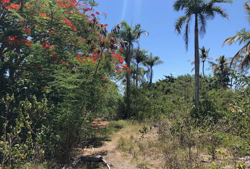 #2 Commercial lot on main highway, close to downtown Sosua