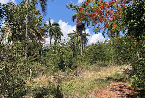 #3 Commercial lot on main highway, close to downtown Sosua