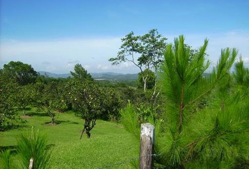 #2 Charming Jarabacoa villa with a large lot and incredible views