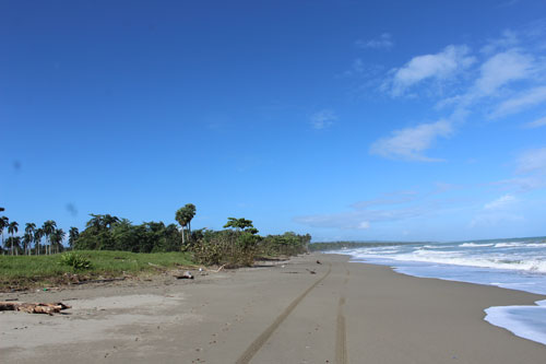#4 Stunning Beachfront Land With Wide Frontage